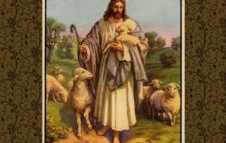 688934__jesus-good-shepherd_p