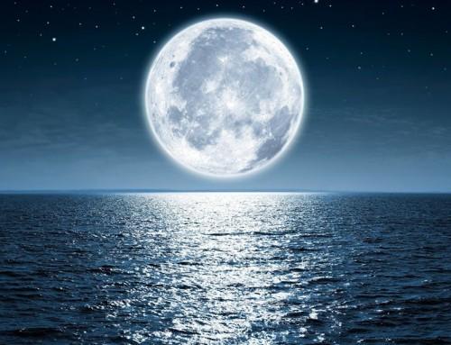 Meine Botschaft für das Mondjahr 2020🌙